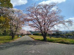 熊本市営霊園イメージ