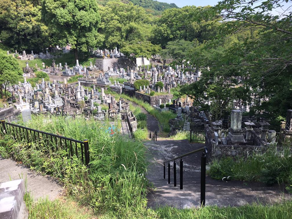 熊本市営花園墓地の全体写真