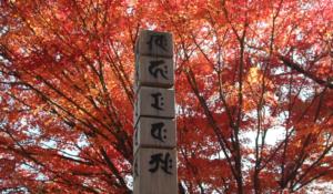 梵字イメージ画像